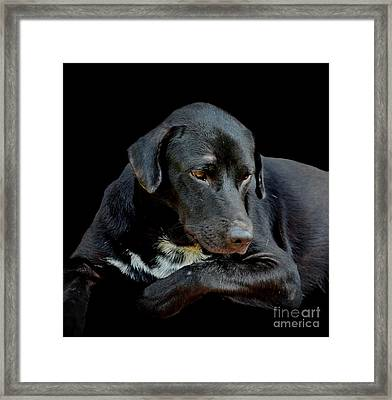 I Got The Blues Framed Print by Michelle Meenawong