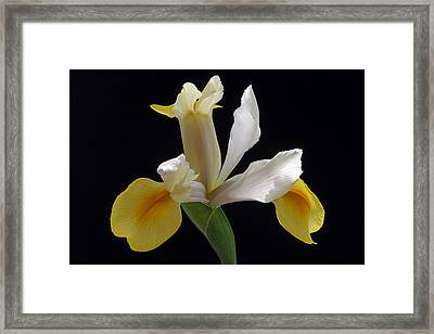 I Have Not Yet Lost My Grace Framed Print by Juergen Roth