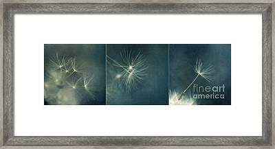 If I Had One Whish Triptychon Framed Print by Priska Wettstein