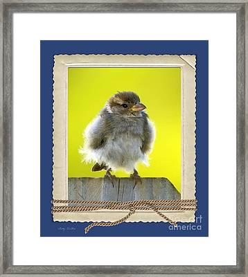 I Miss My Nest Framed Print by Betty LaRue