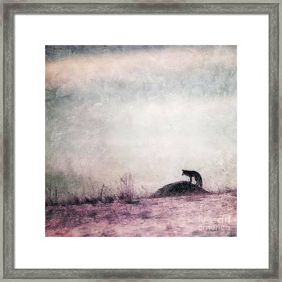 I Only Hear Silence Framed Print by Priska Wettstein