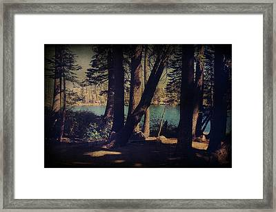 I Sit In The Shadows Framed Print by Laurie Search