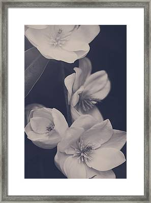 I Was Always Your Flower Framed Print by Laurie Search
