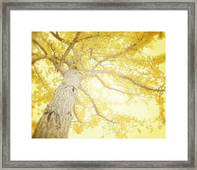 I Will Remember You Framed Print by Amy Tyler