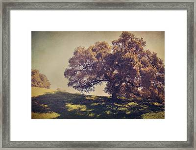 I Wish You Had Meant It Framed Print by Laurie Search