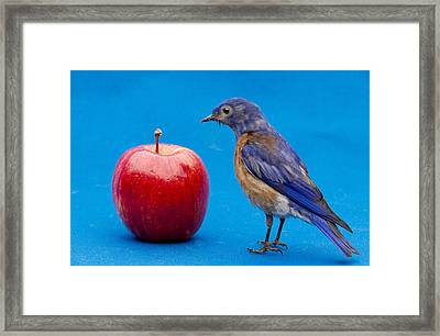 I Would Rather See The Doctor Framed Print by Jean Noren