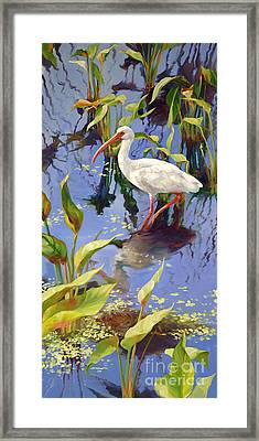 Ibis Deux Framed Print by Laurie Hein