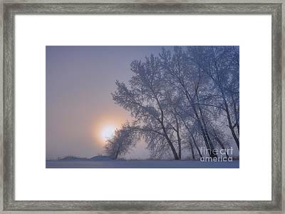 Ice Crystals In The Sky Framed Print by Dan Jurak
