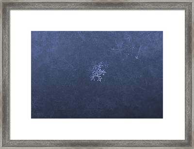 Ice Jewellery Framed Print by Aivis Ilsters