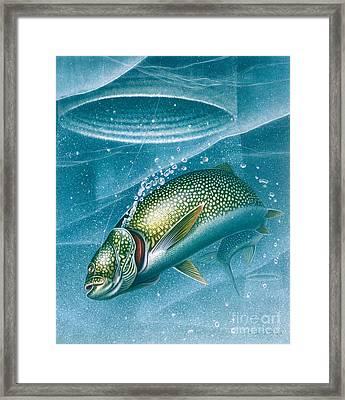 Ice Laker Framed Print by Jon Q Wright