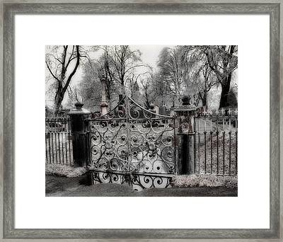 Ice On The Gate Framed Print by Gothicolors Donna Snyder