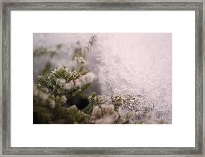 Ice Prison Framed Print by Dave Woodbridge