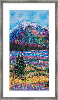Icefields Alberta Mountain Framed Print by Joyce Sherwin