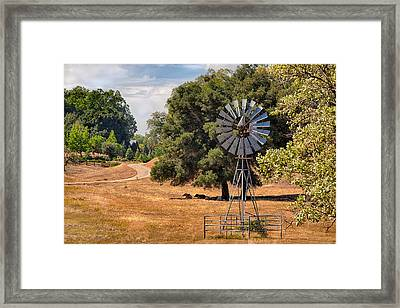 Idyllic Framed Print by Peter Tellone