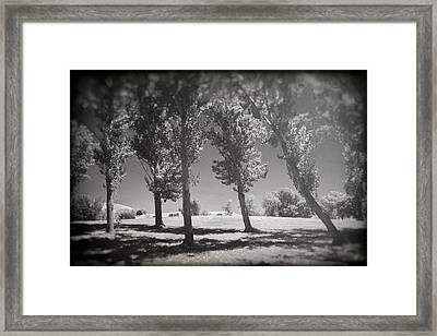 If You're Flawless Framed Print by Laurie Search