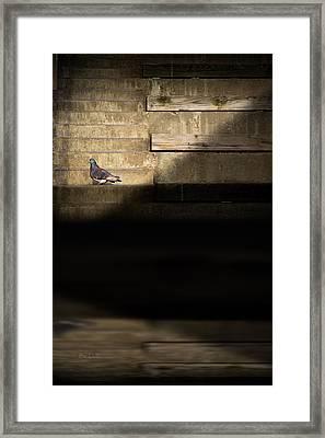 Il Piccolo Guardiano Framed Print by Bob Orsillo
