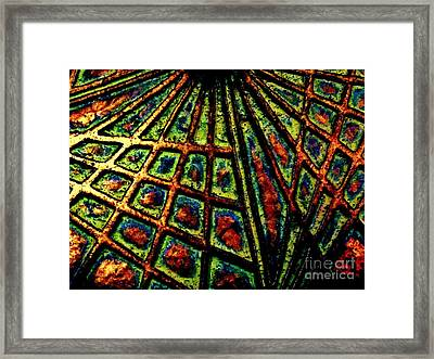Illusions Framed Print by Lori-Anne Fay