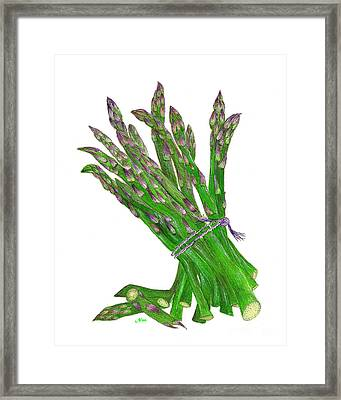 Illustration Of Asparagus Framed Print by Nan Wright
