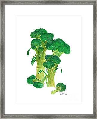 Illustration Of Broccoli Framed Print by Nan Wright
