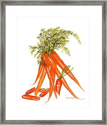 Illustration Of Carrots Framed Print by Nan Wright