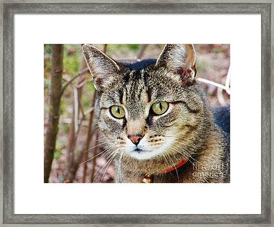 I'm Beautiful Framed Print by Judy Via-Wolff