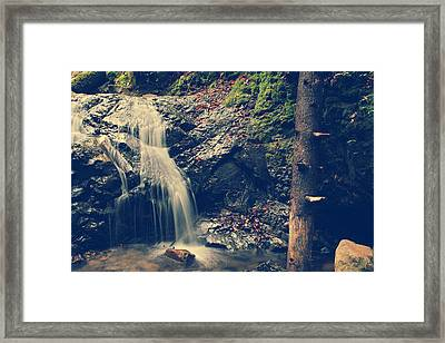I'm Not Giving Up On You Framed Print by Laurie Search