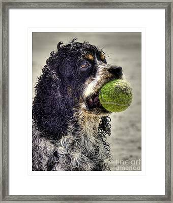 I'm Ready To Play Framed Print by Benanne Stiens