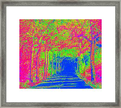 Imaginary Road Framed Print by L Brown