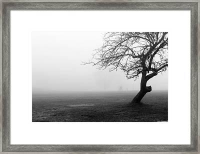 Black And White Abstract Of Tree In Fog Framed Print by Aldona Pivoriene