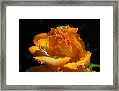 #imagine Framed Print by Becky Furgason
