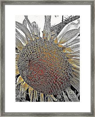 Imagine The Color Framed Print by Michael Hoard