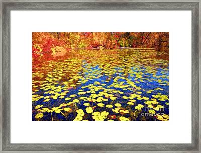 Impression Of Waterlily Pond Framed Print by Charline Xia