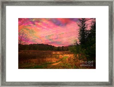 Impressionistic Morning View Of West Virginia Botanic Garden Framed Print by Dan Friend
