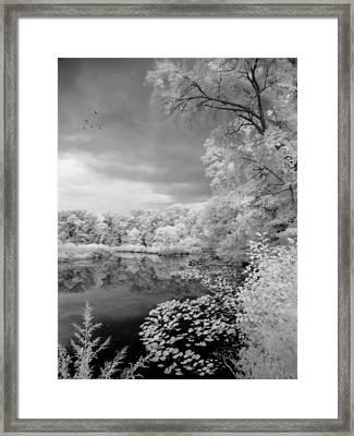 In A Dream Framed Print by John Rivera
