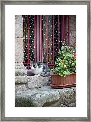 In A Residential Section Of Auray Framed Print by Mallorie Ostrowitz