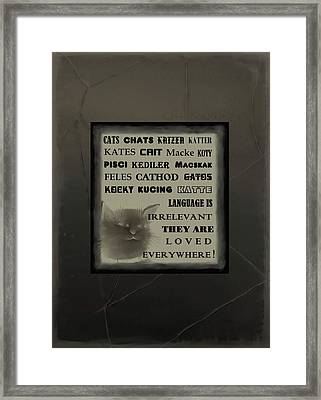 In Any Language We Still Love Cats - Poster  No. 1 Framed Print by Diane Strain