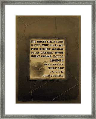 In Any Language We Still Love Cats - Poster  No. 2 Framed Print by Diane Strain