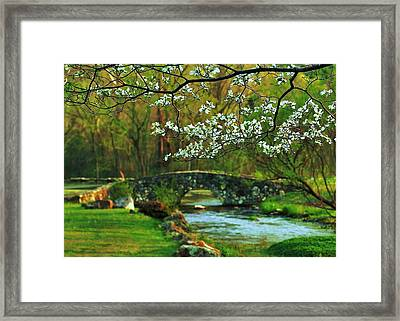 In Bloom Framed Print by Benjamin Yeager