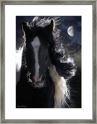 In Dreams... Framed Print by Fran J Scott