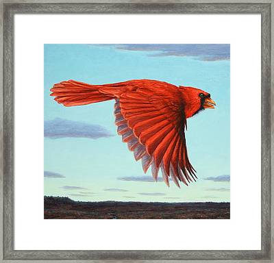 In Flight Framed Print by James W Johnson