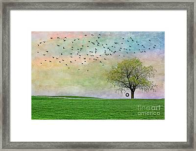 In Green Pastures Framed Print by Jak of Arts Photography
