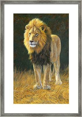 In His Prime Framed Print by Lucie Bilodeau