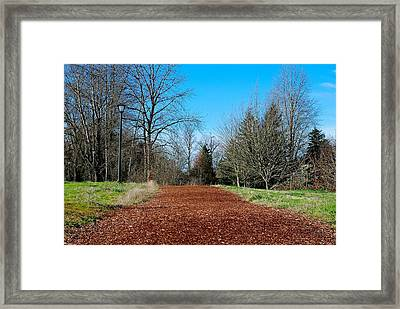In Memory Of The Legendary Steve Prefontaine Framed Print by David Coleman