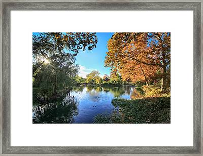 In Our Own Special World Framed Print by Laurie Search