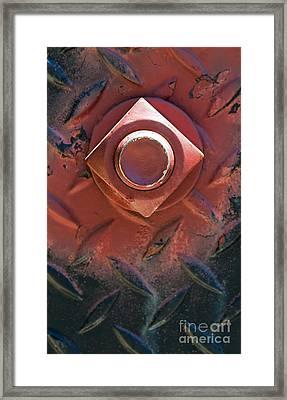 In Red On Black Framed Print by Dan Holm