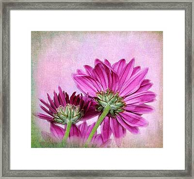 In Reverse Framed Print by Judy Vincent