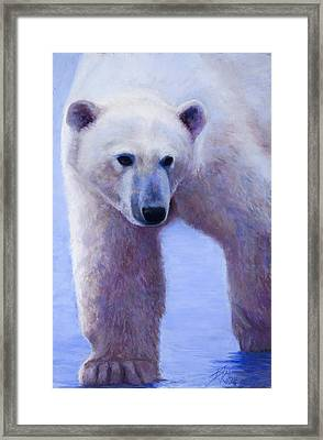 In Search Of Framed Print by Billie Colson