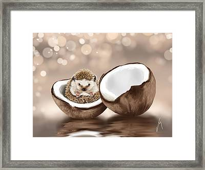 In The Coconut Framed Print by Veronica Minozzi