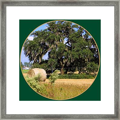 In The Country Framed Print by Dorothy Menera