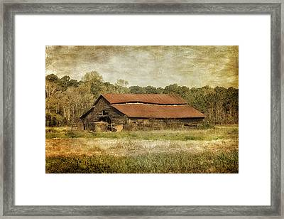 In The Country Framed Print by Kim Hojnacki